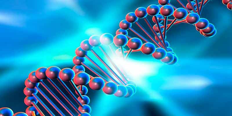 Компьютер на основе ДНК - фантастика, ставшая реальностью