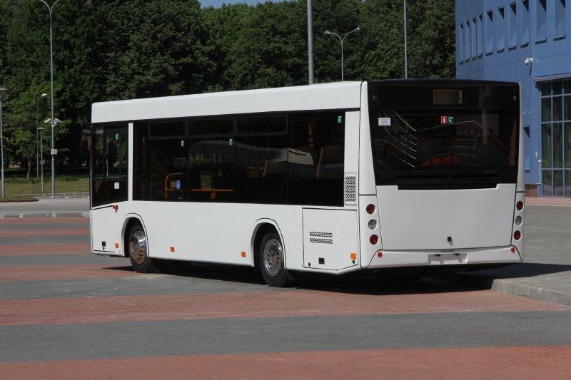 """В Москве автобусы будут оснащены видеооборудованием для проверки билетов, а в Белоруссии """"зайцев"""" будут вычислять по весу"""